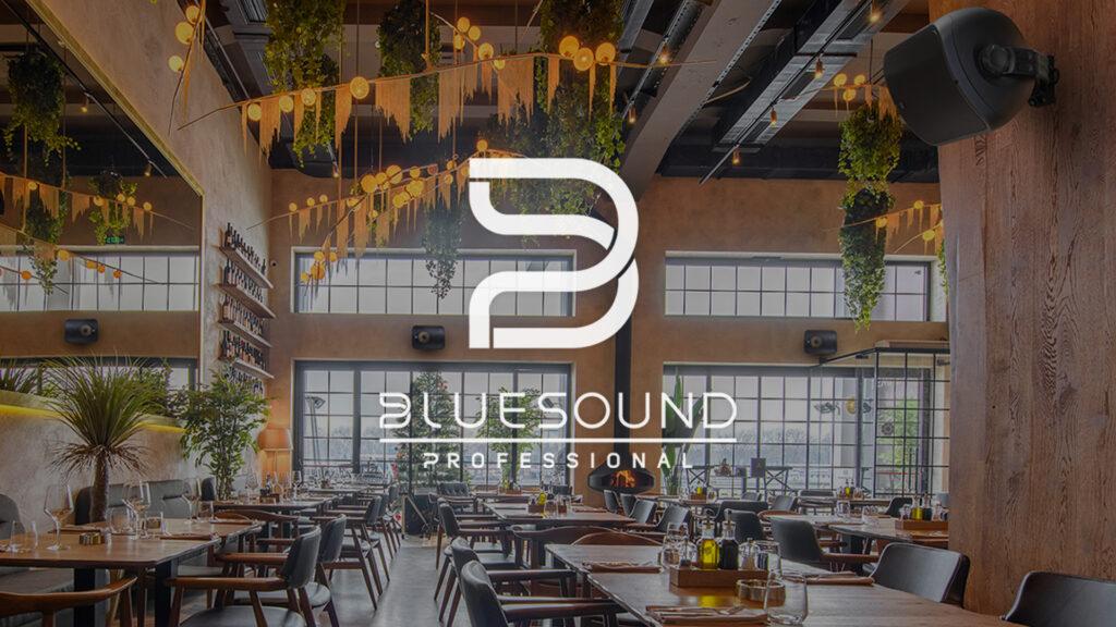 Bluesound Professional BSP500 & BSP1000